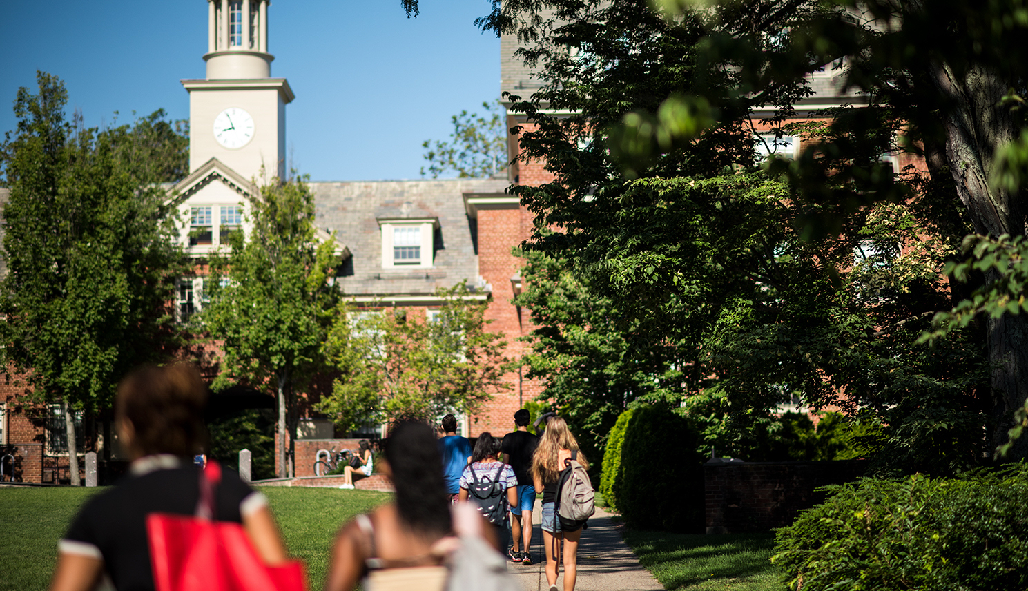 9 Awesome Things You Could Be Doing This Summer At Brown