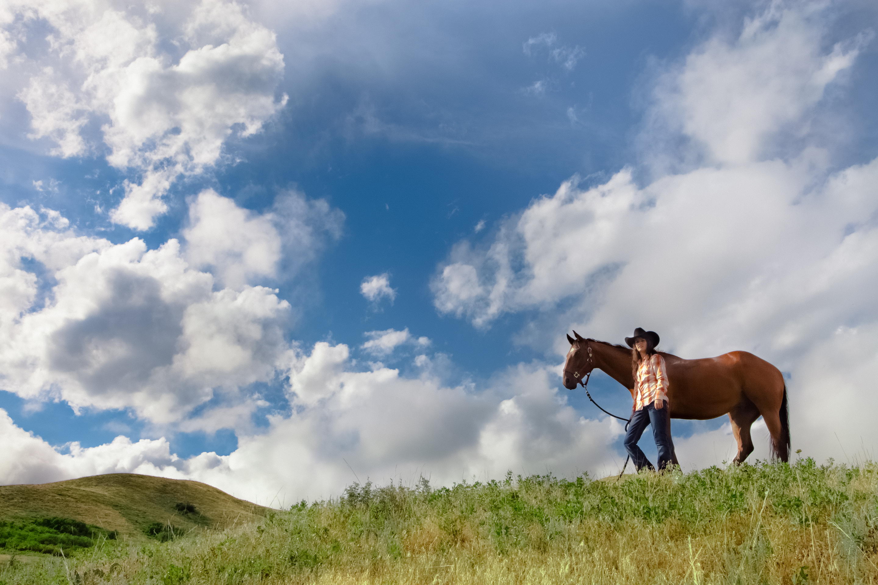 At Turn-About Ranch, each student is assigned a horse to care for on the ranch.
