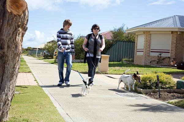 Would raise community service money by dog walking?