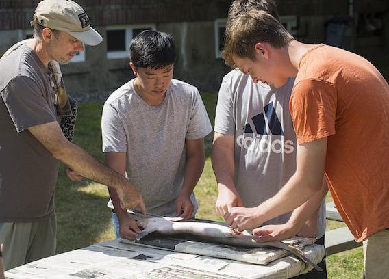 Summer Program - Science | Acadia Institute of Oceanography: Advanced Program