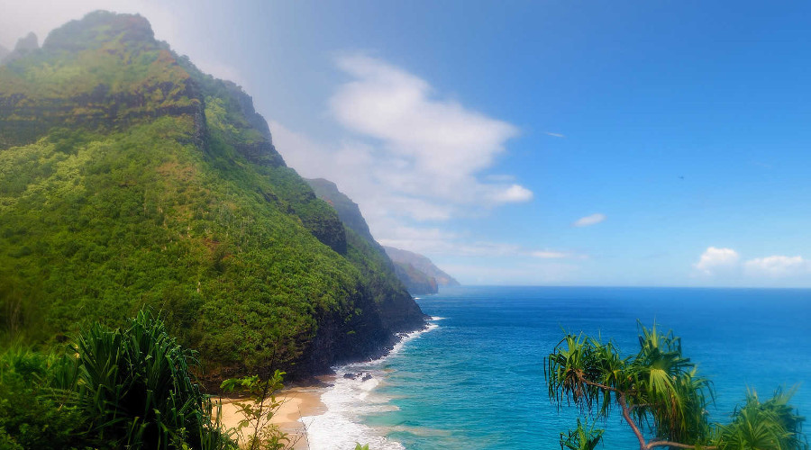 Summer Program - Wildlife Conservation | ARCC Programs | Hawaii: Preserving Paradise