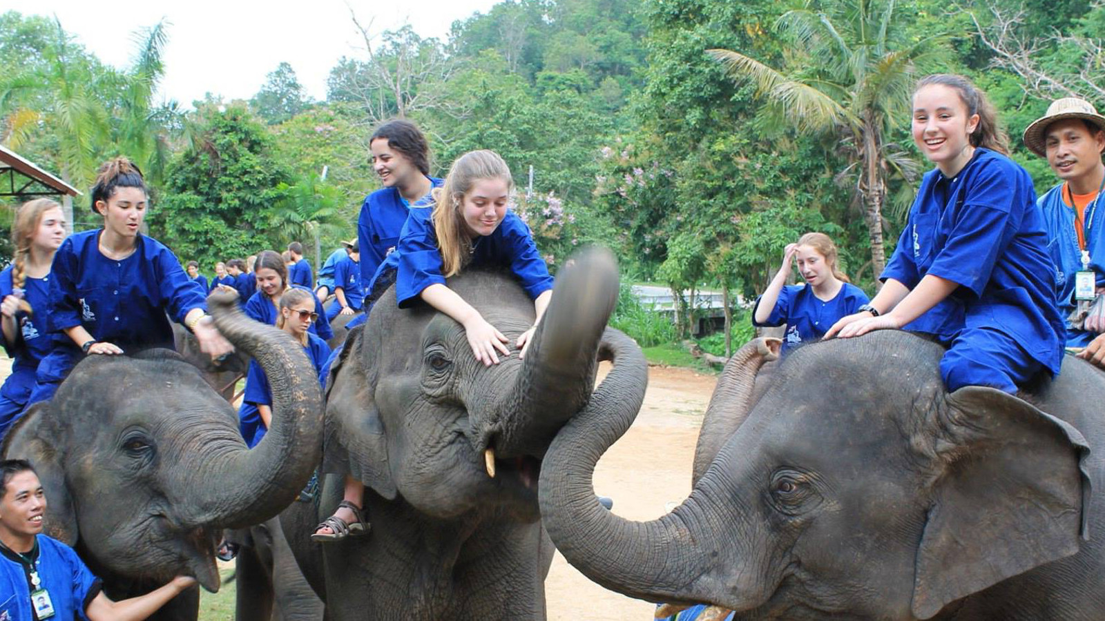 Summer Program - Preserving the Environment | ARCC Programs | Thailand: Elephant Experience