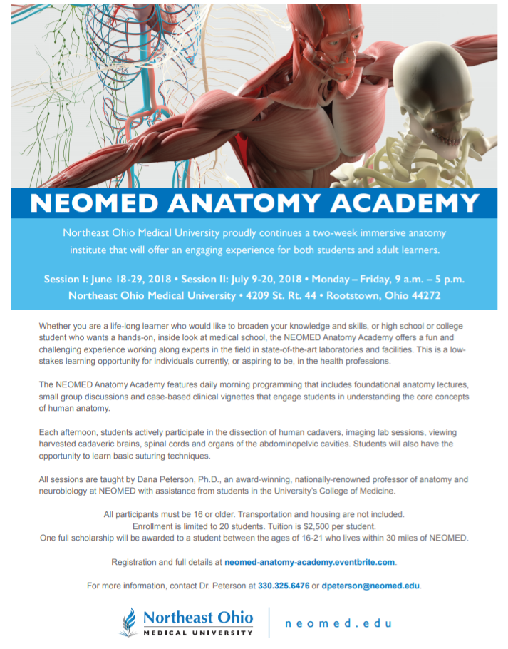 Summer Program Anatomy Academy At Northeast Ohio University On Teenlife