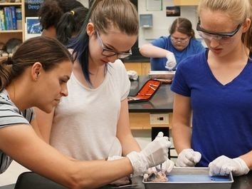 Summer Program - Biology | Boston Leadership Institute: Anatomy & Surgical Research
