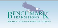 Business Benchmark Transitions: reviews