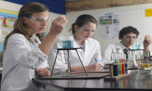 Summer Program - Biology | Boston College Experience: Forensics and Crime Scene Analysis