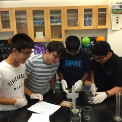 Summer Program - Pre-Med   Boston Leadership Institute: Human Genetics Summer Program