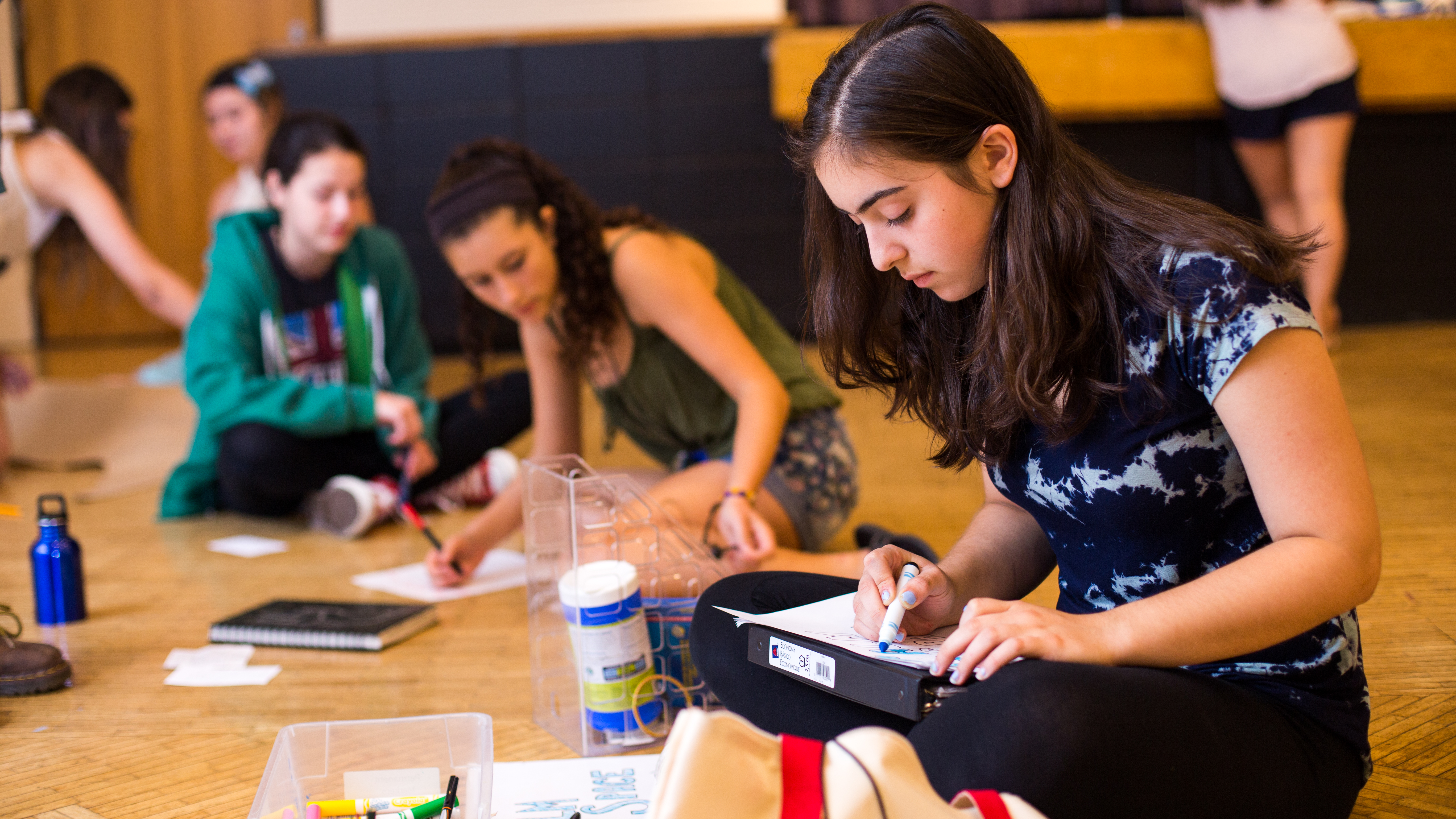 Summer Program - Pre-College | Brandeis University Pre-College: Genesis