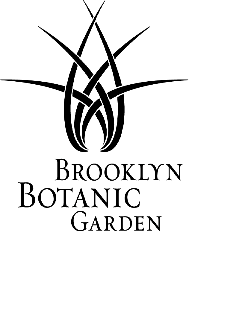 Summer Program - Youth | Brooklyn Botanic Garden - Garden Apprentice Program