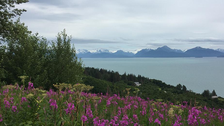 Summer Program - Environmental Science | Brown Environmental Leadership Lab (BELL): Alaska