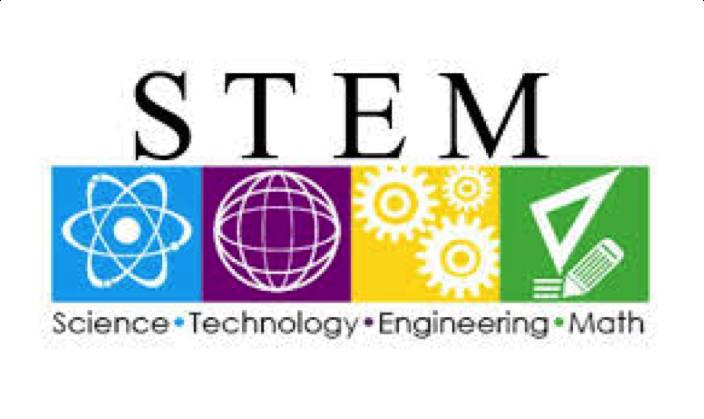 Summer Program - Pre-Med | Building Excellent Scientists for Tomorrow (Summer STEM program)
