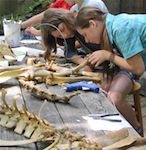 Summer Program - Gifted - Academic | Burgundy Center for Wildlife Studies