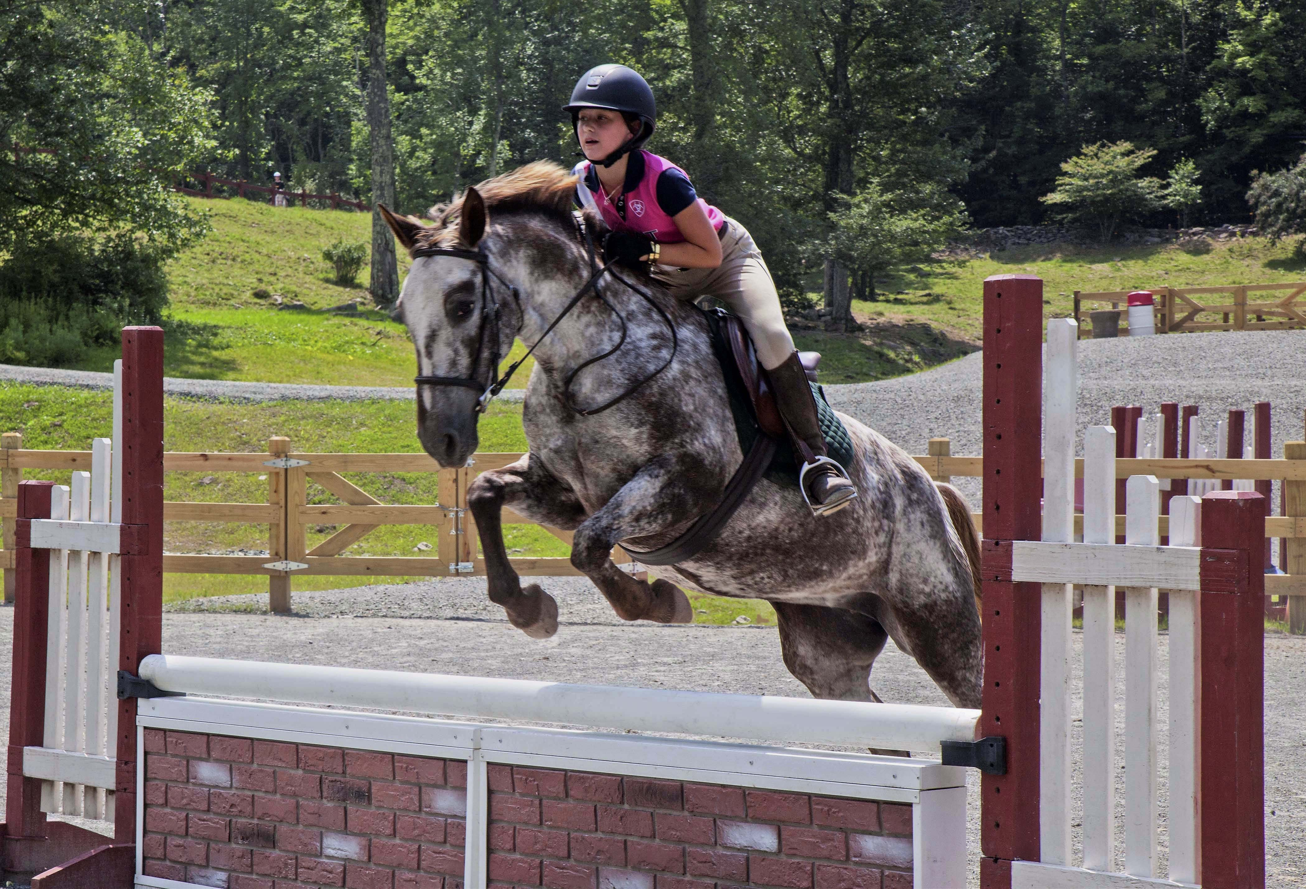 Summer Program - Horseback Riding | Camp Cayuga