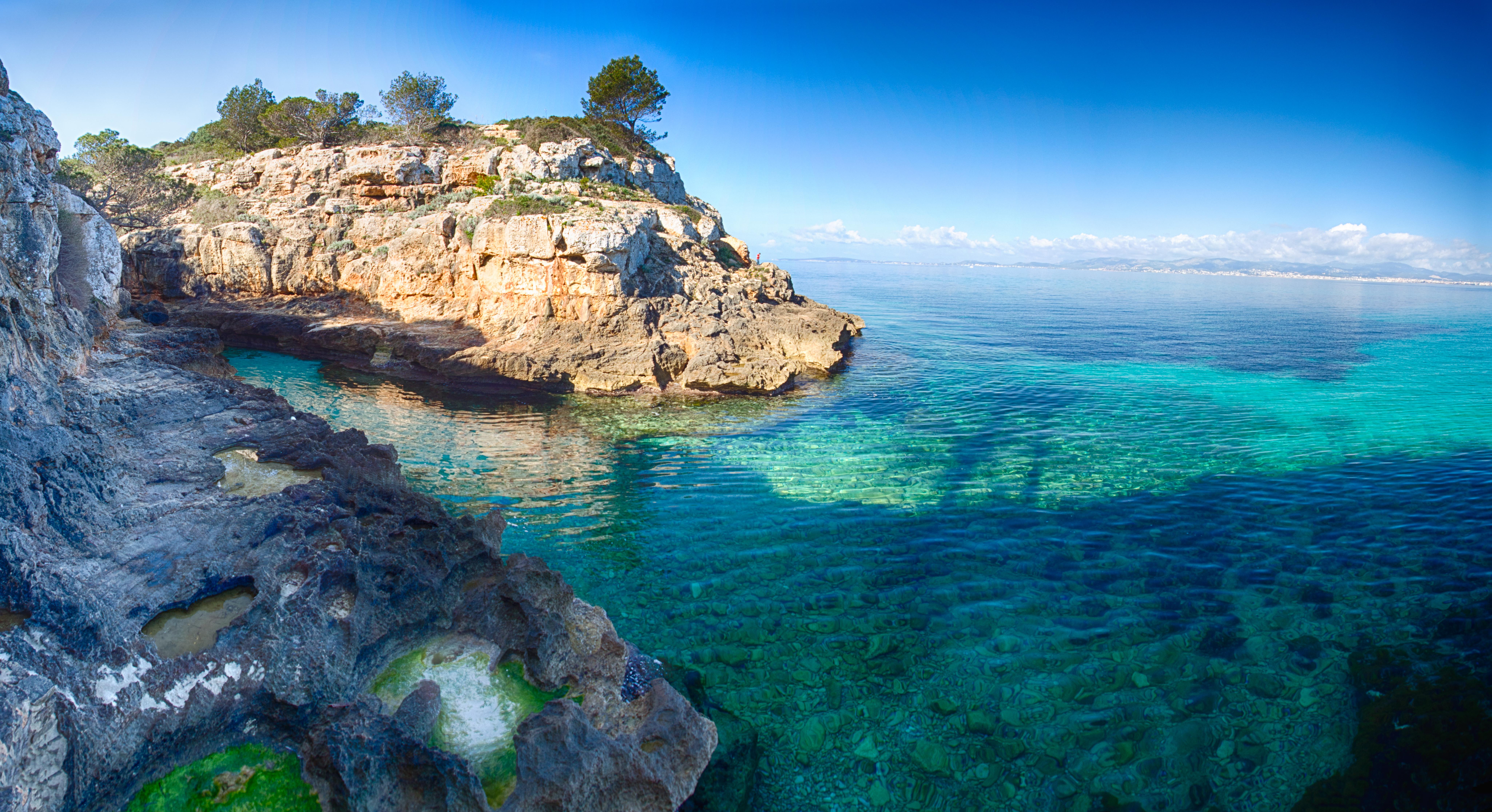 Summer Program - Marine Biology | CIEE High School Summer Abroad in Palma De Mallorca, Spain - Marine Science & Field Work