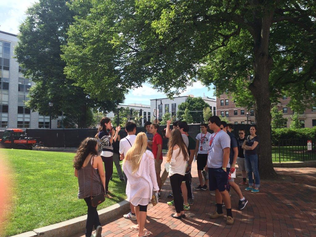 Summer Program - College Experience | College Prep: College Admissions Counseling and Test Prep with The Princeton Review