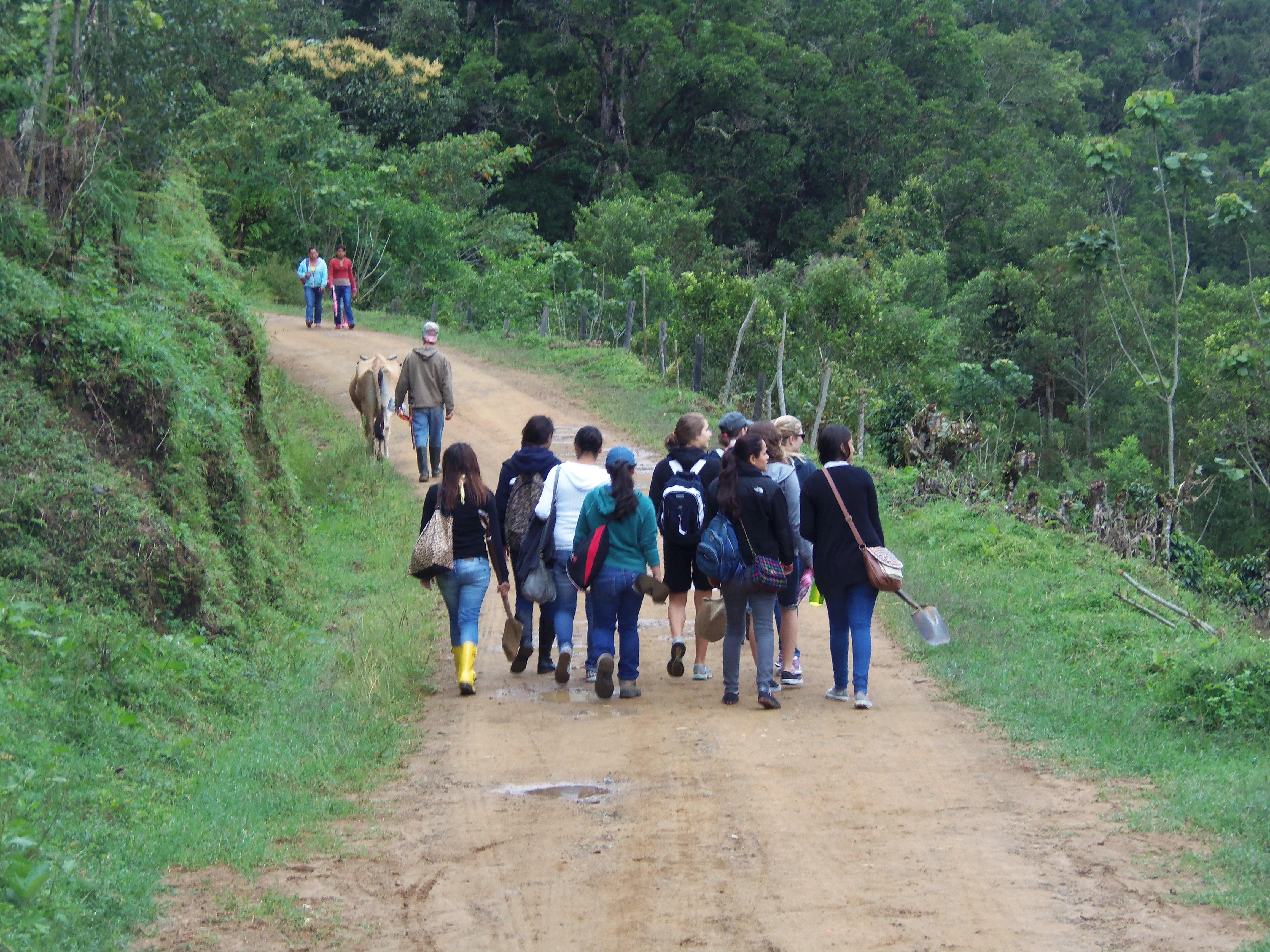 Gap Year Program - Costa Rica/Guatemala Gap Semester by Dream Volunteers  3