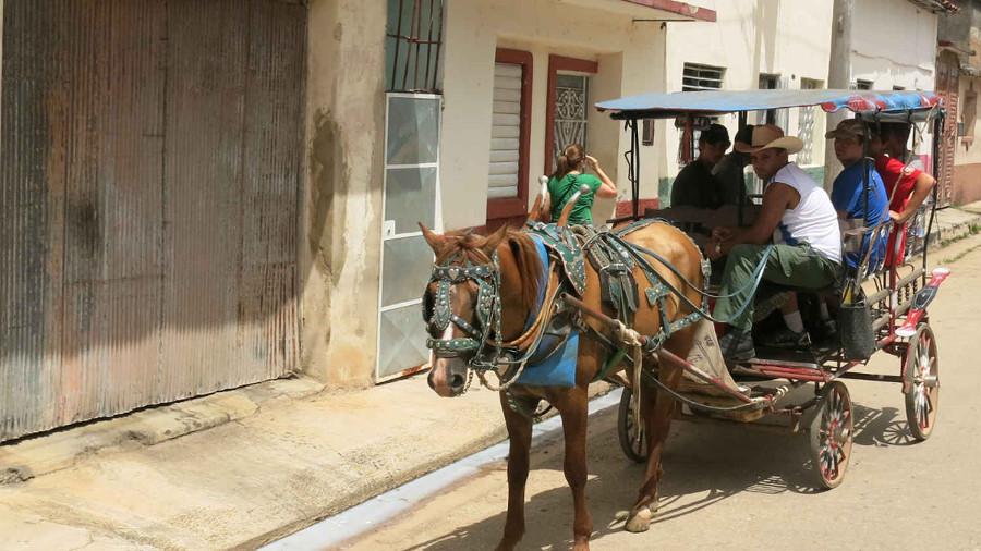 Summer Program - Homelessness and Hunger | ARCC Programs | Cuba: Making History