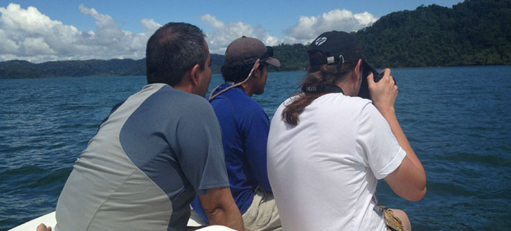 Summer Program - Wildlife Conservation | Earthwatch Institute: Marine Mammals and Predators in Costa Rica
