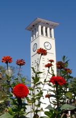 College - Emory University  3