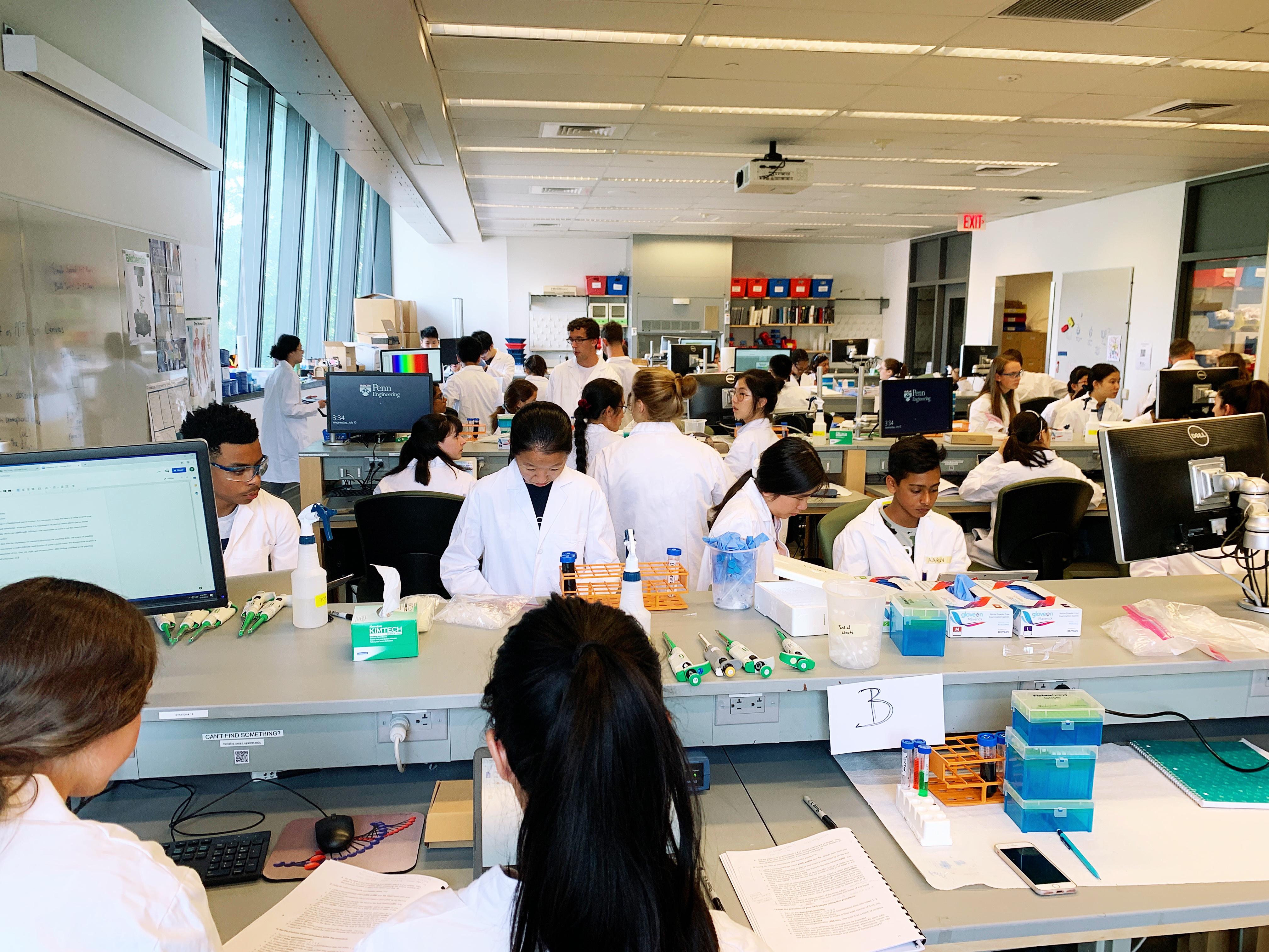 Summer Program - Bio Technology | Engineering Summer Academy at Penn