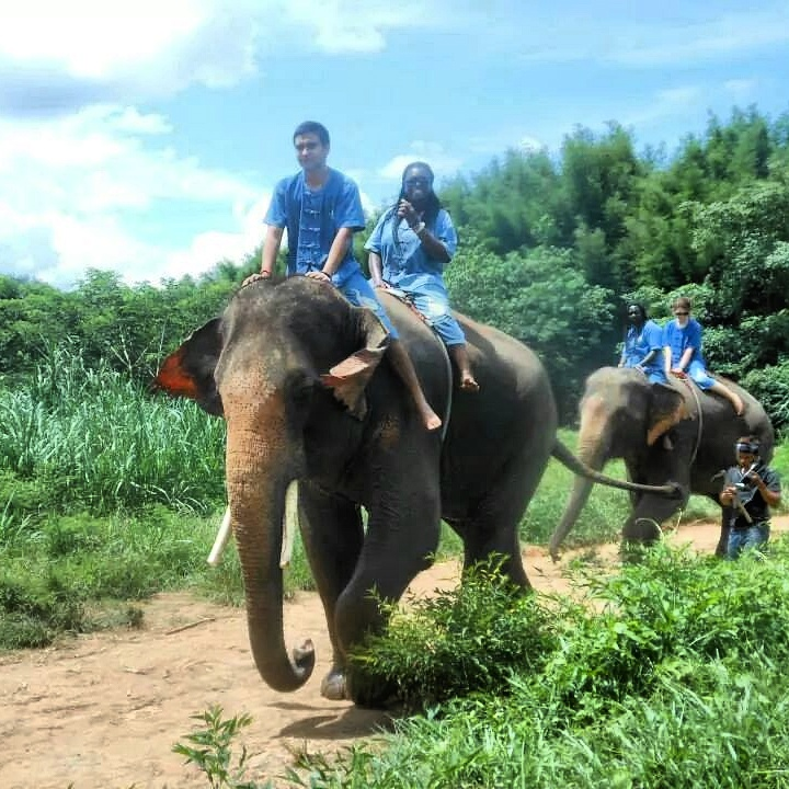 Summer Program - Travel And Tourism | Experiment in International Living: Thailand - From Ancient Temples to Bangkok