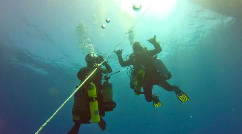 Gap Year Program - Gapforce  Marine Scientist Training  1