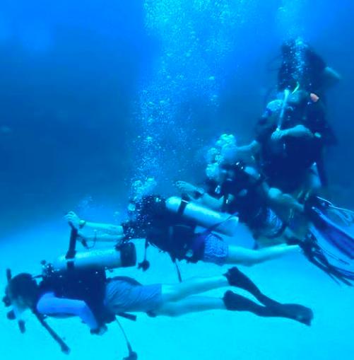 Gap Year Program - Gapforce  Marine Scientist Training  9
