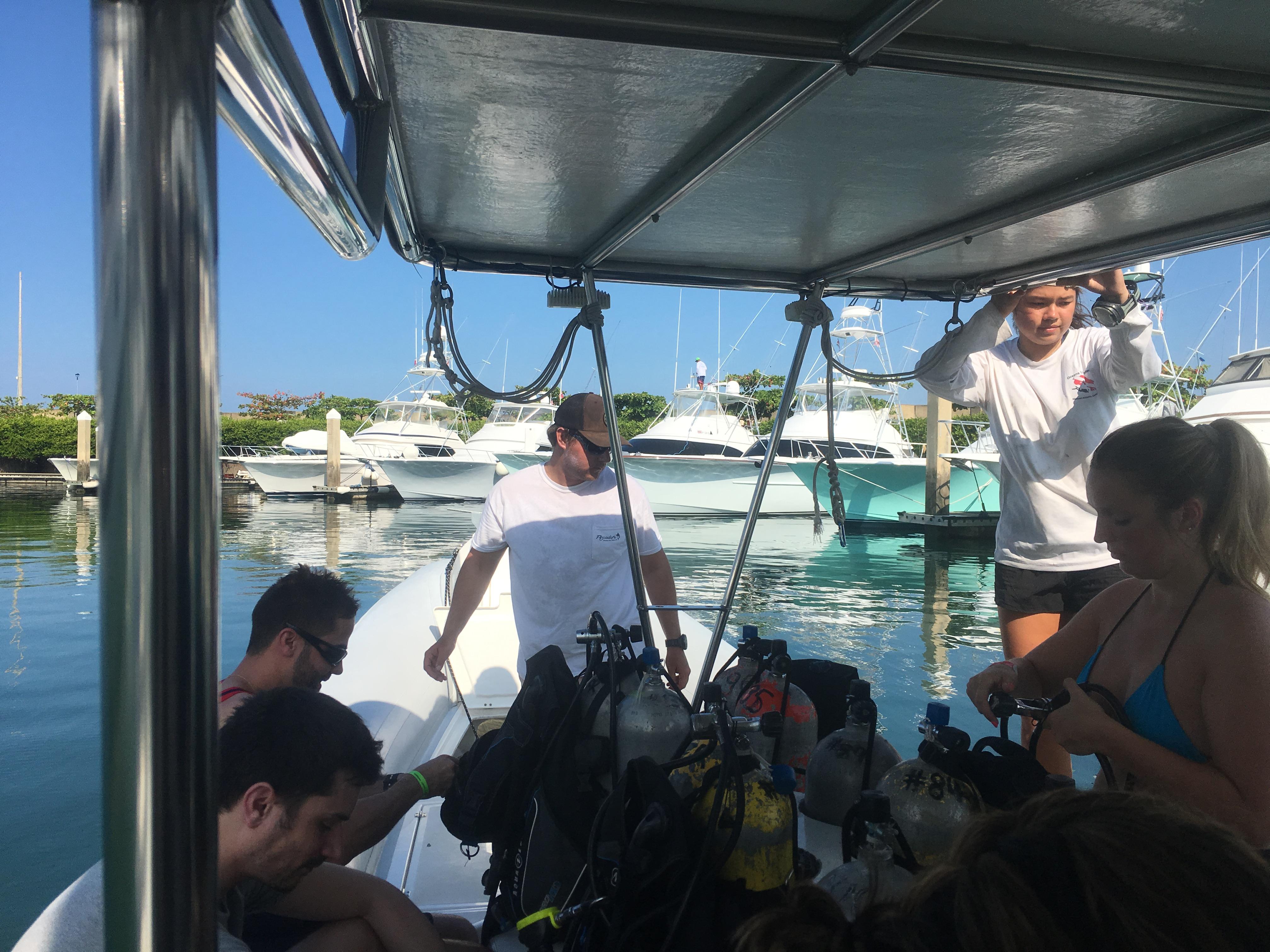 Gap Year Program - Gapforce  Marine Scientist Training  8