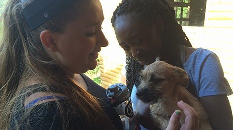Summer Program - Adventure/Trips | Global Leadership Adventures: Costa Rica - Animal Rescue Project