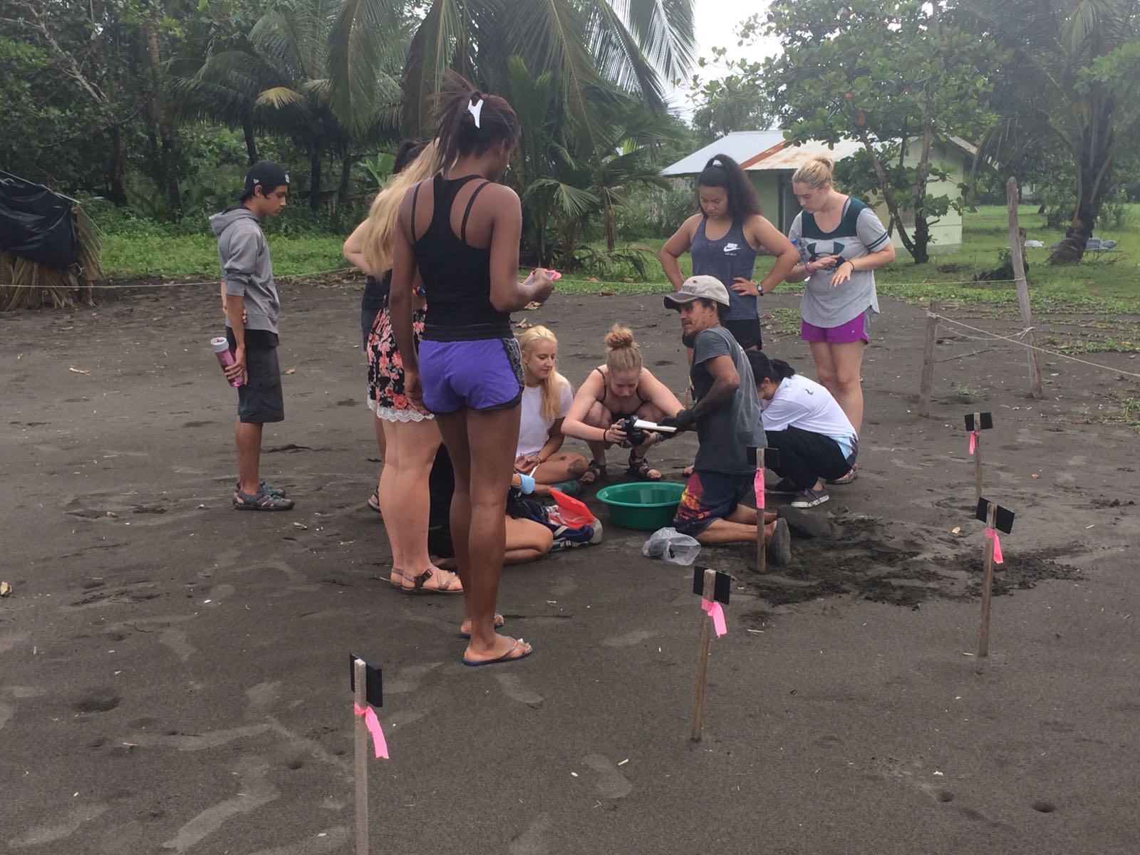 Summer Program - Preserving the Environment | Global Works - Costa Rica: Sea Turtle Expedition