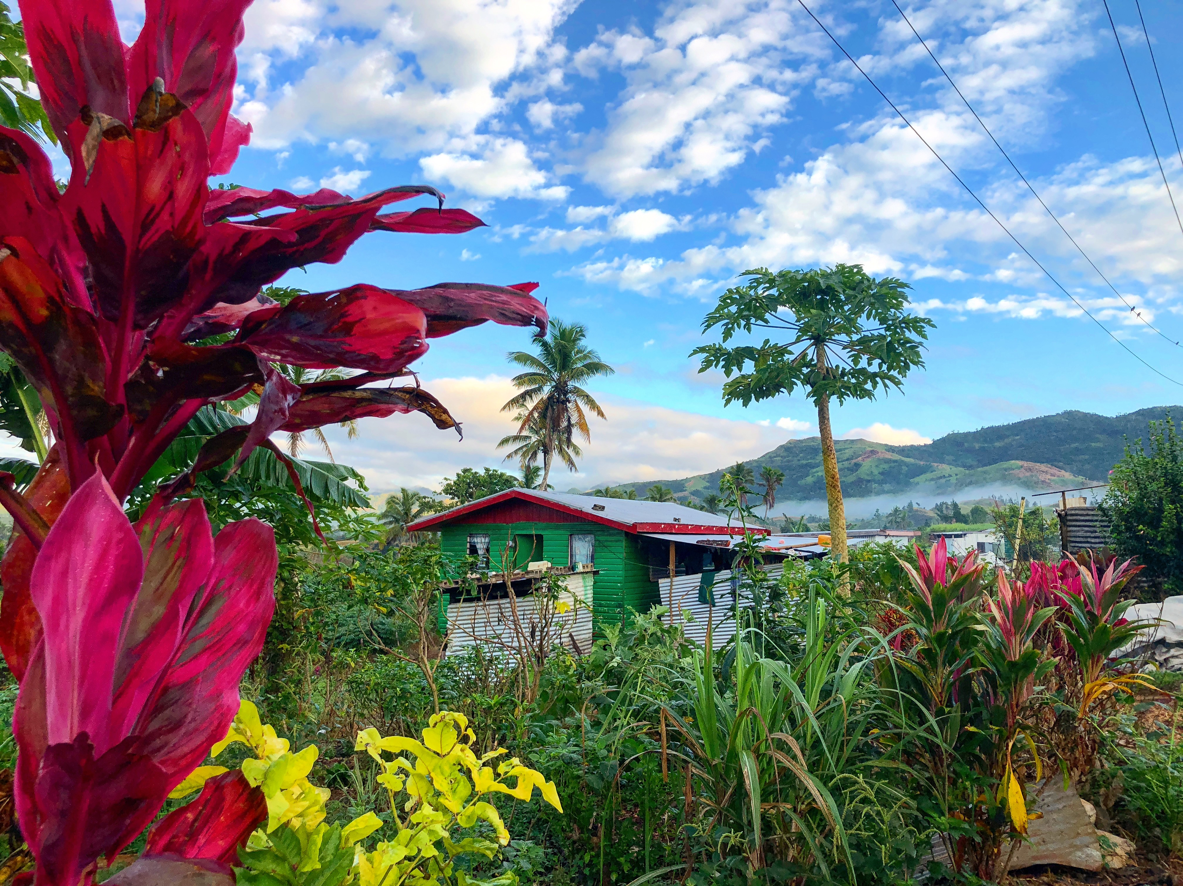 Summer Program - Health and Well Being | Global Works - Fiji Islands: Building Community