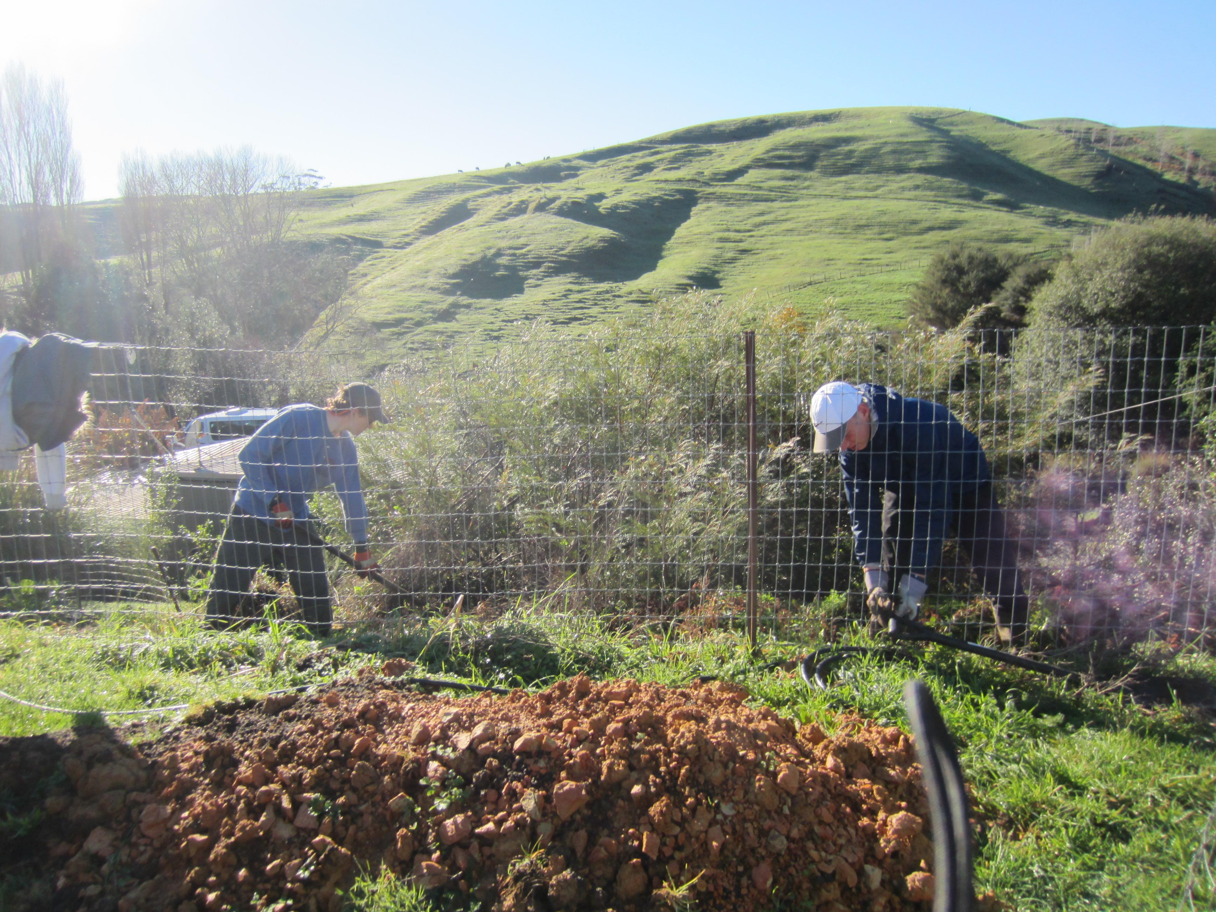 Summer Program - Promoting Volunteerism | Global Works - New Zealand & Fiji Islands: Eco-Adventure
