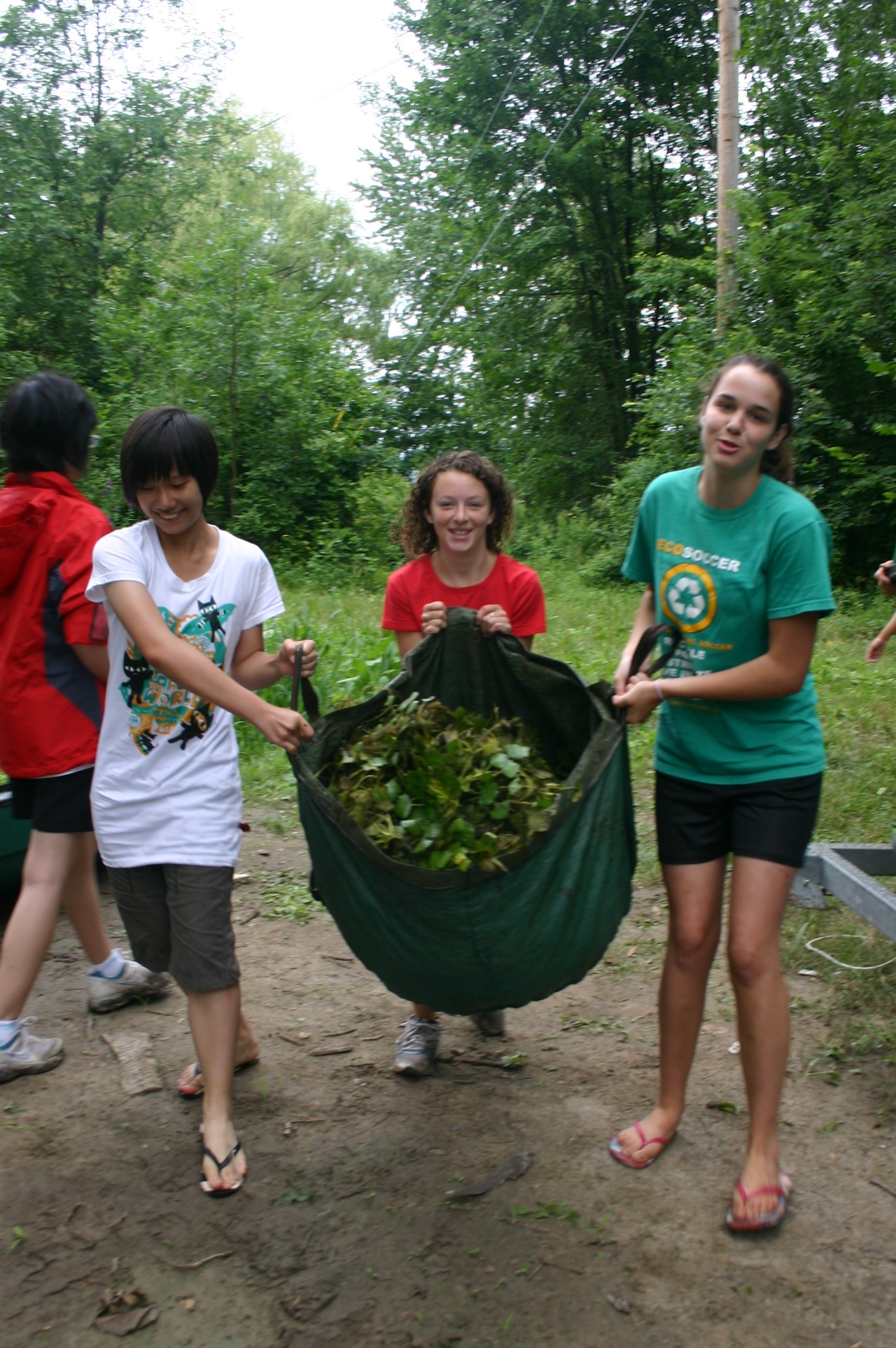 Summer Program - Chinese Culture | Green Across the Pacific:  Environmental Exchange