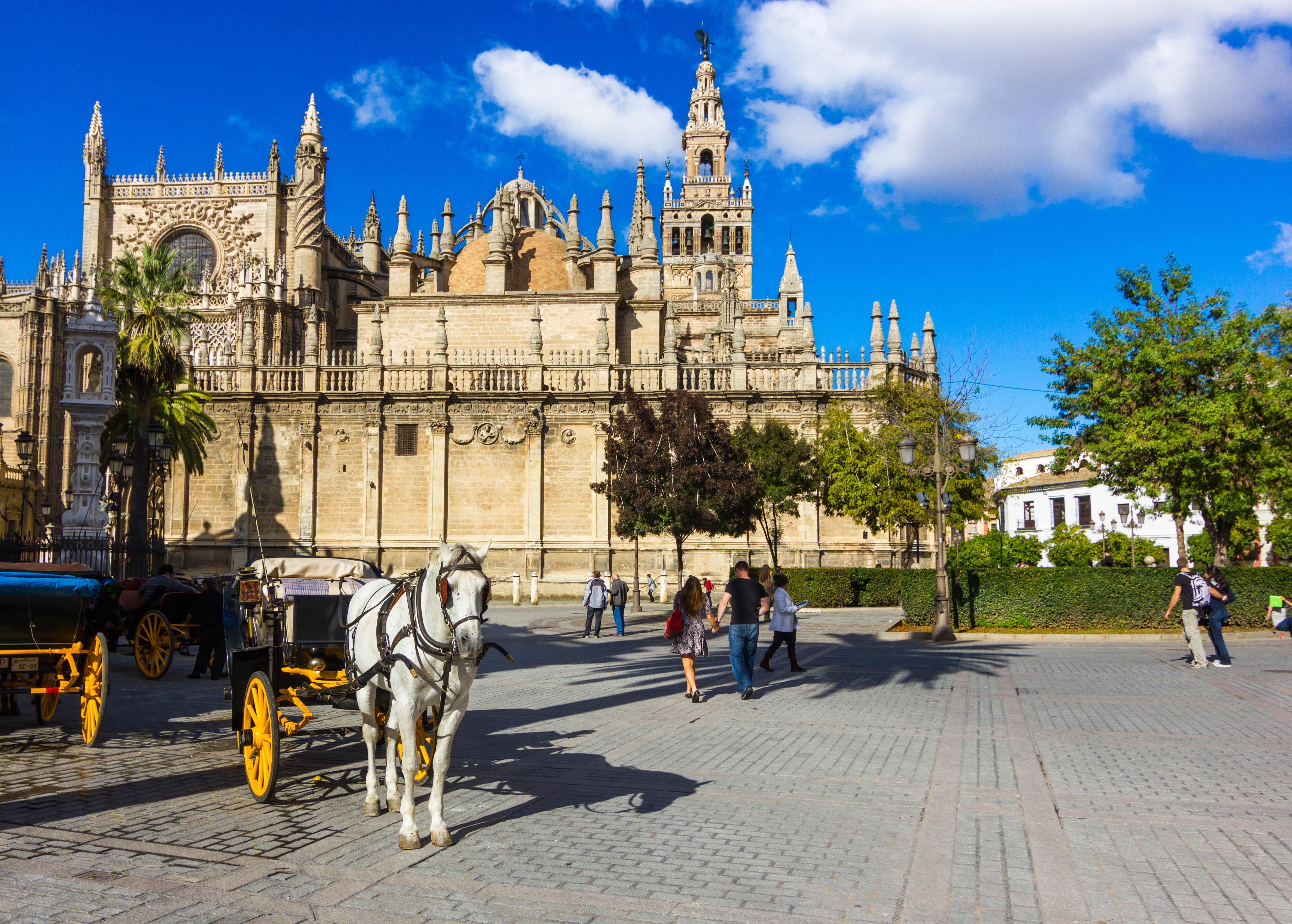 Gap Year Program - High School Study Abroad in Spain Gap Sessions & Year Programs  3