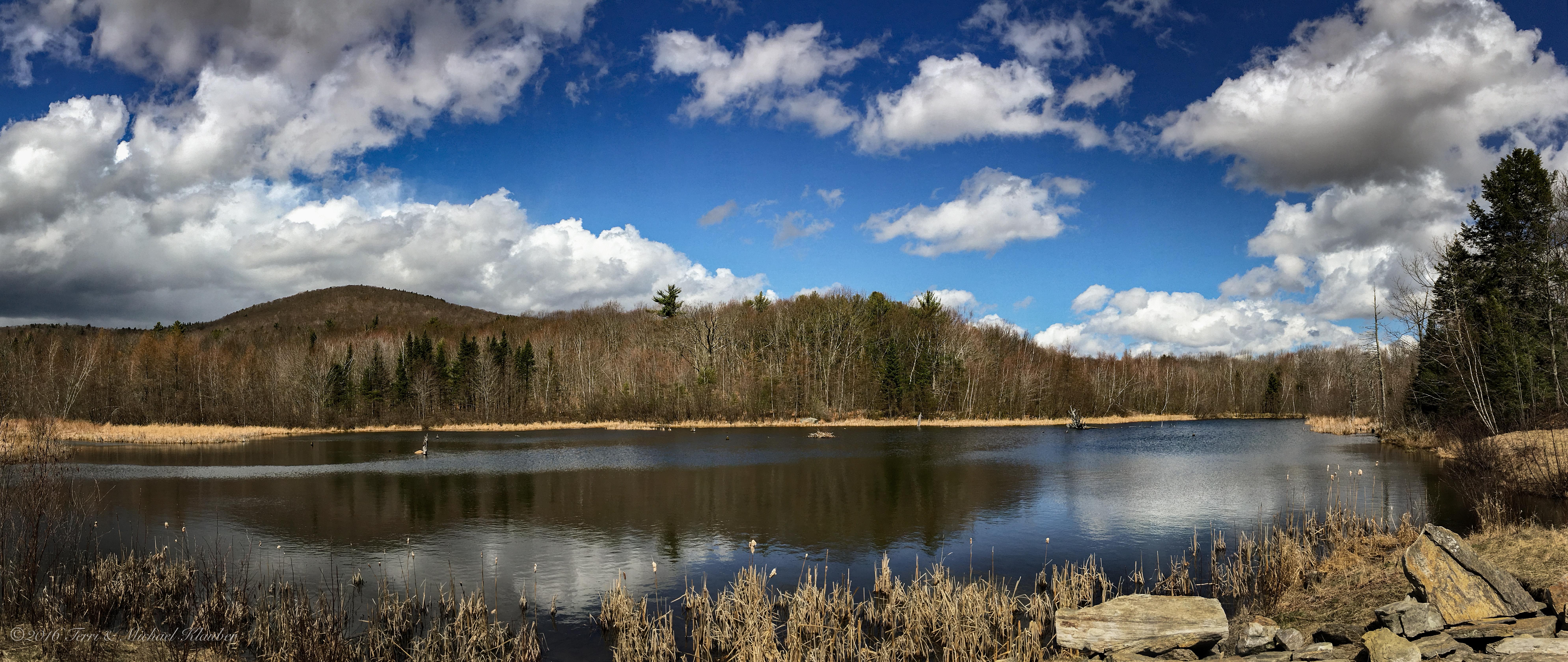 Business - Therapeutic | Ironwood Maine