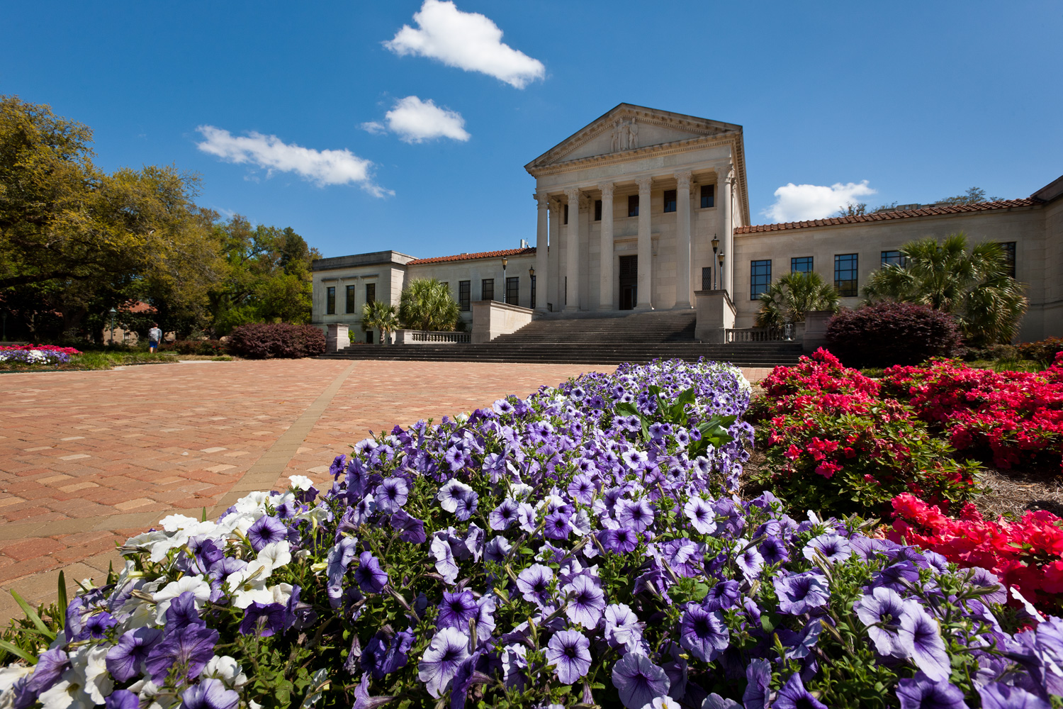 College - Louisiana State University - Department of Arts, English, and Humanities at Alexandria Campus  1