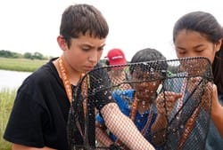 Summer Program - Science | Boston Leadership Institute: Marine Biology Summer Program