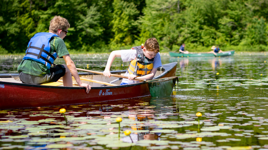 Summer Program - Environmental Conservation | Mass Audubon's Wildwood Overnight Camp