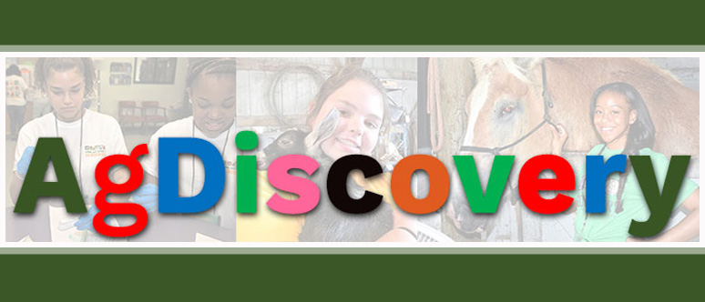 Summer Program - Science | NC State University: Ag-DISCOVERY Camp
