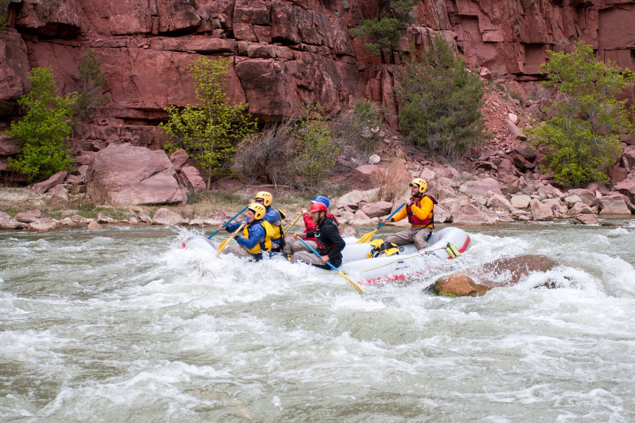 Summer Program - Whitewater Rafting | NOLS Summer Semester in the Rockies