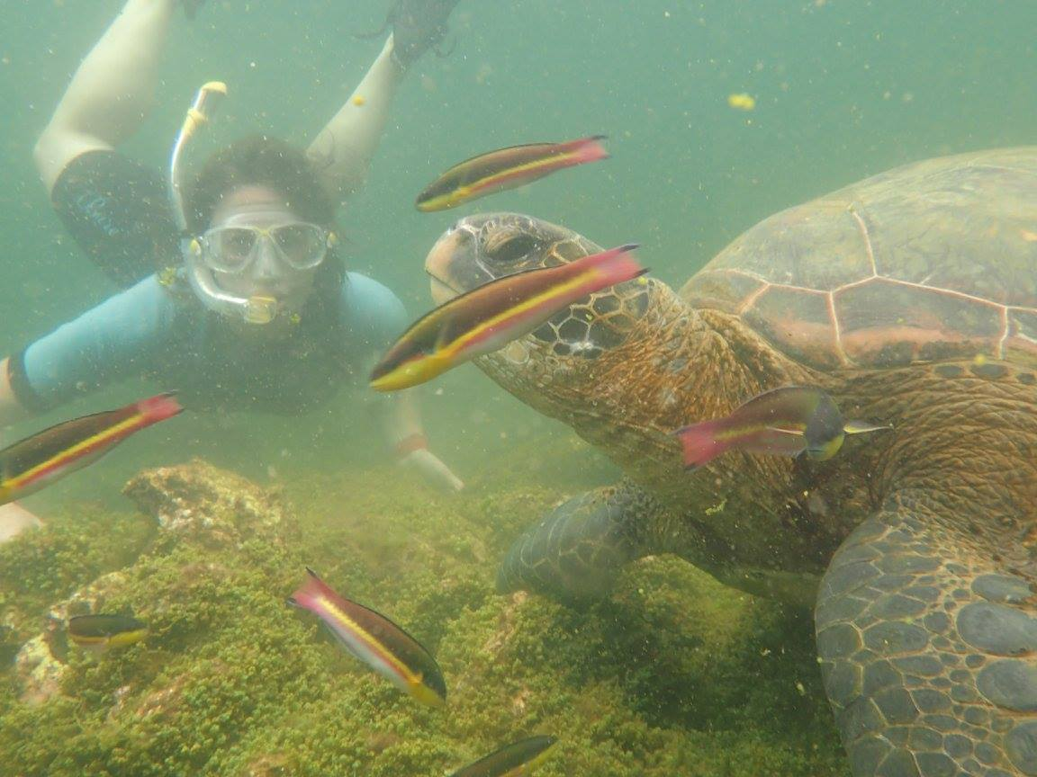 Summer Program - Tours | Pacific Discovery: Ecuador & Galapagos Summer Program
