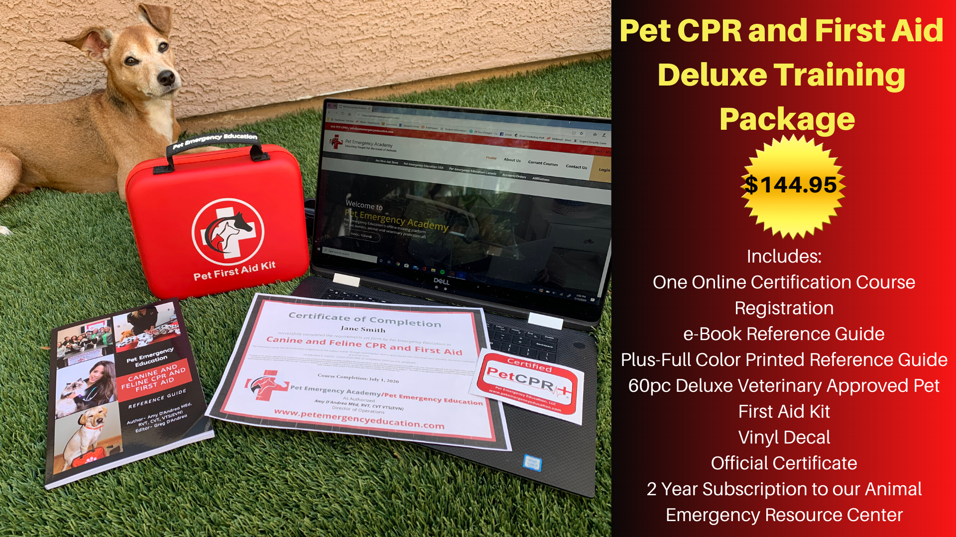 Business - STEM | Pet Emergency Education - Animal CPR, First Aid and Emergency Training