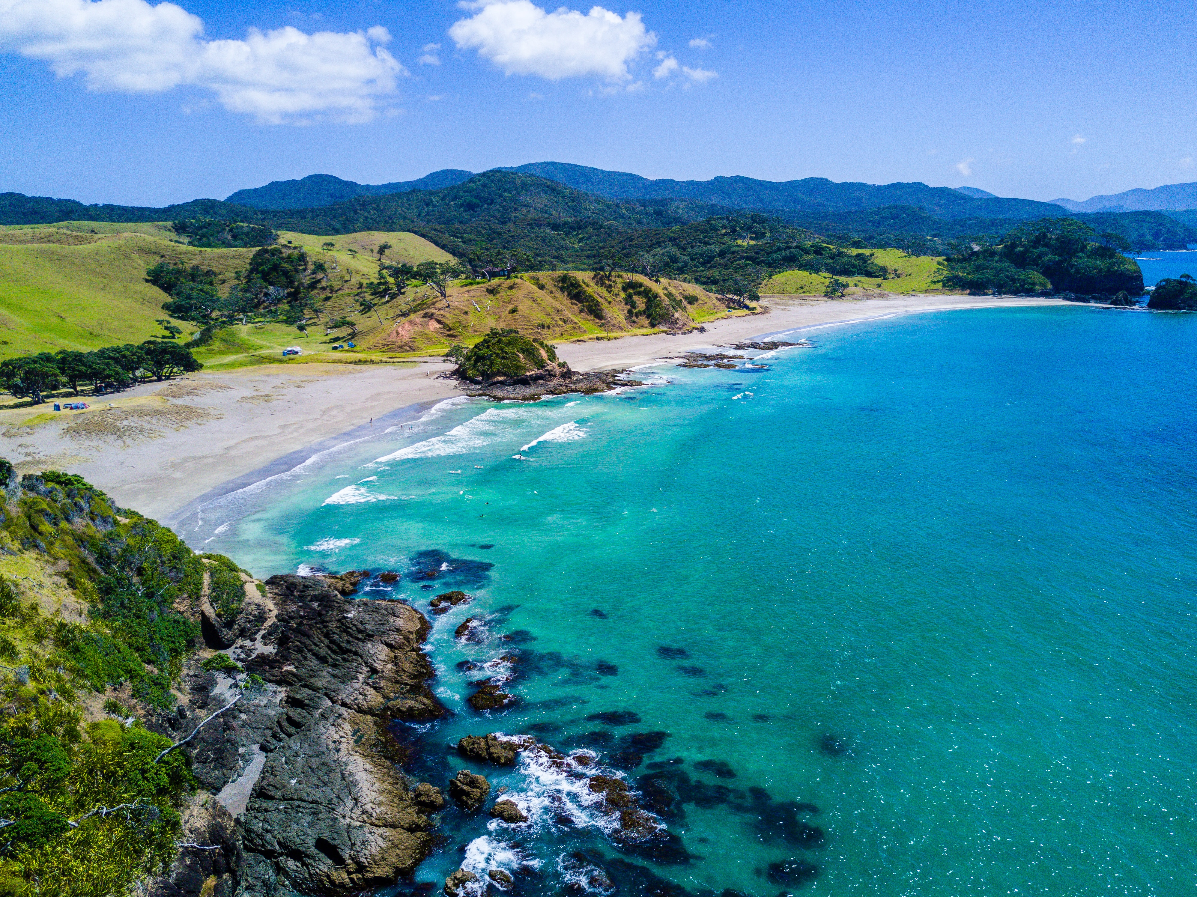 Summer Program - Environment | Pre-College at CET New Zealand: Sustainability in Māori, Pacific, and Indigenous Contexts