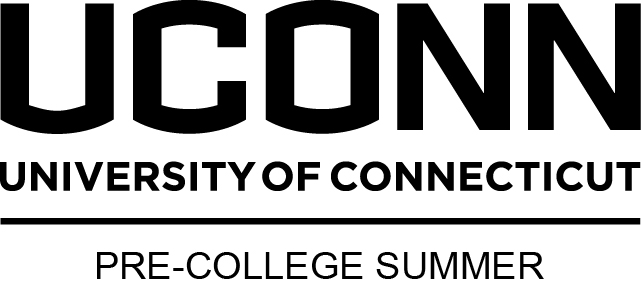 Summer Program Digital Media: Game Design at UConn's Pre-College Summer Program