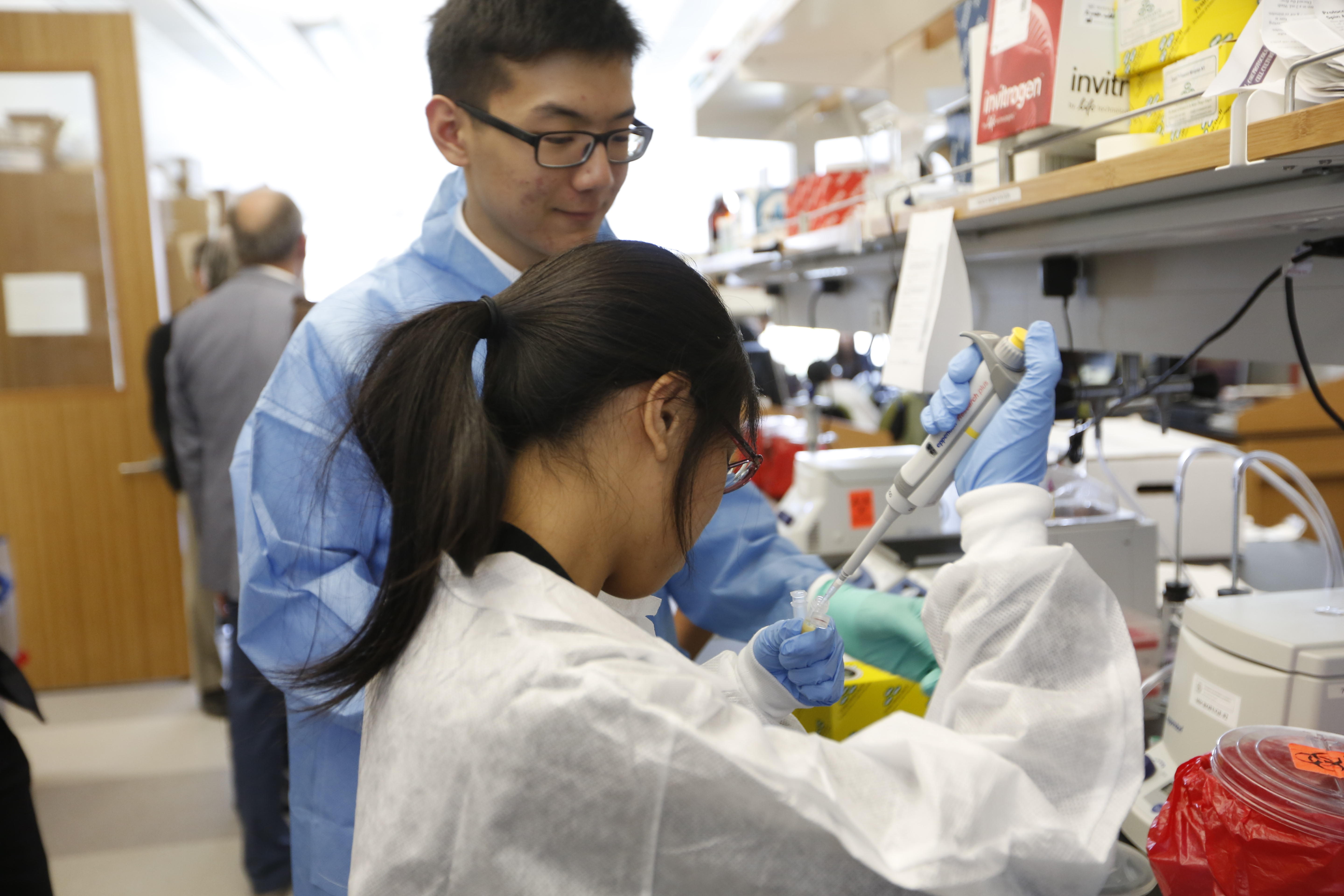 Summer Program - Science | Regenerative Medicine and Disease Modeling