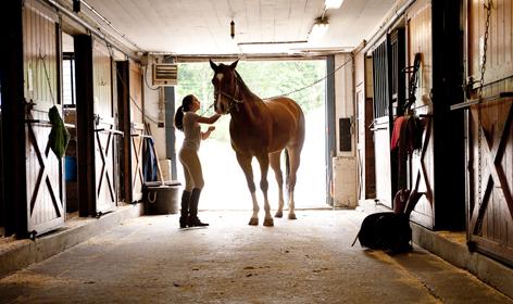 Summer Program - Horseback Riding | Intensive Riding Camp