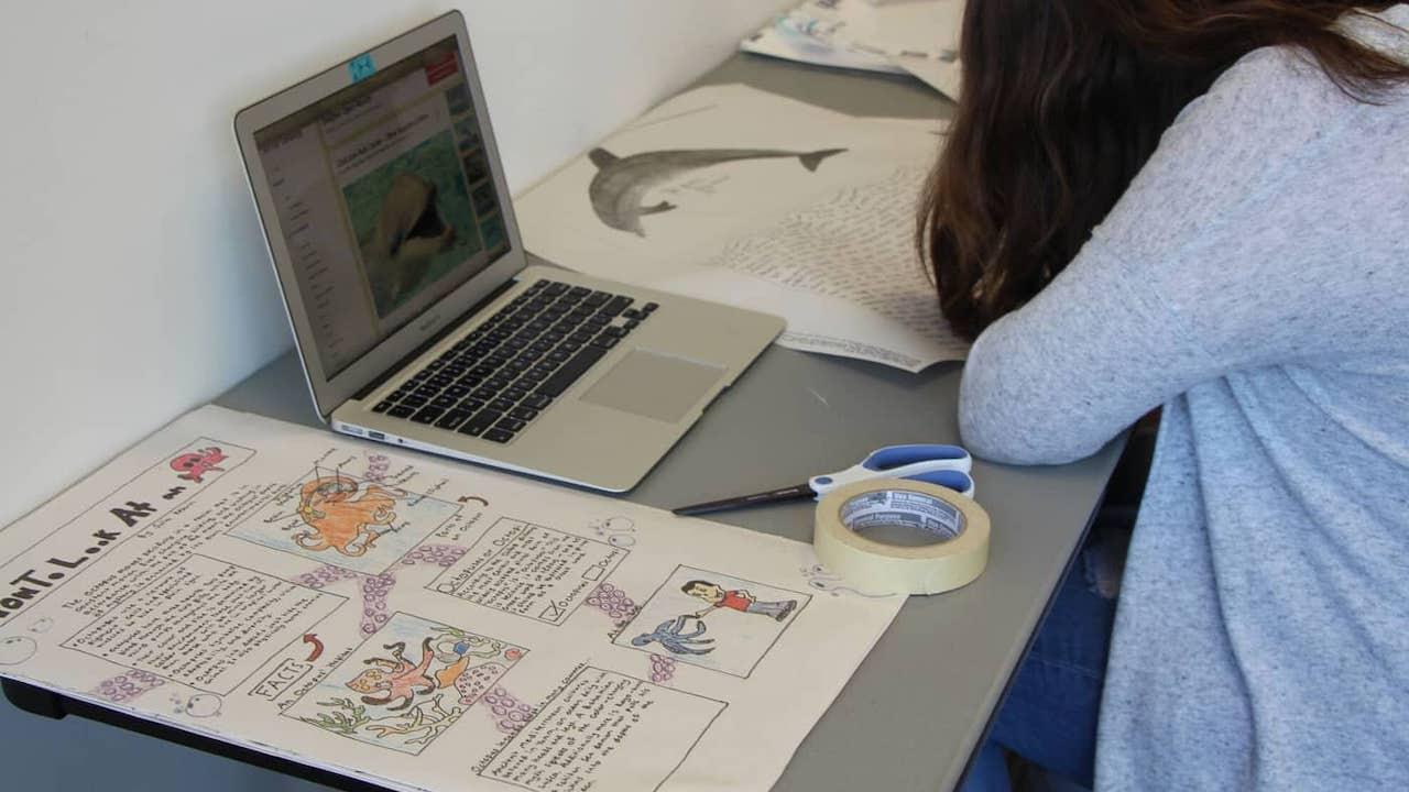 Summer Program - Arts | The School of The New York Times: Visual Storytelling