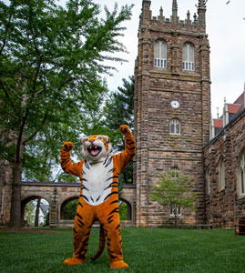 College - Sewanee - University of the South  1