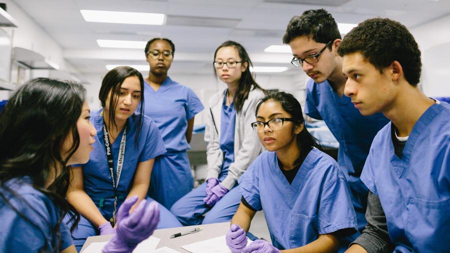 Summer Program - Science | Stanford Medical Youth Science Program