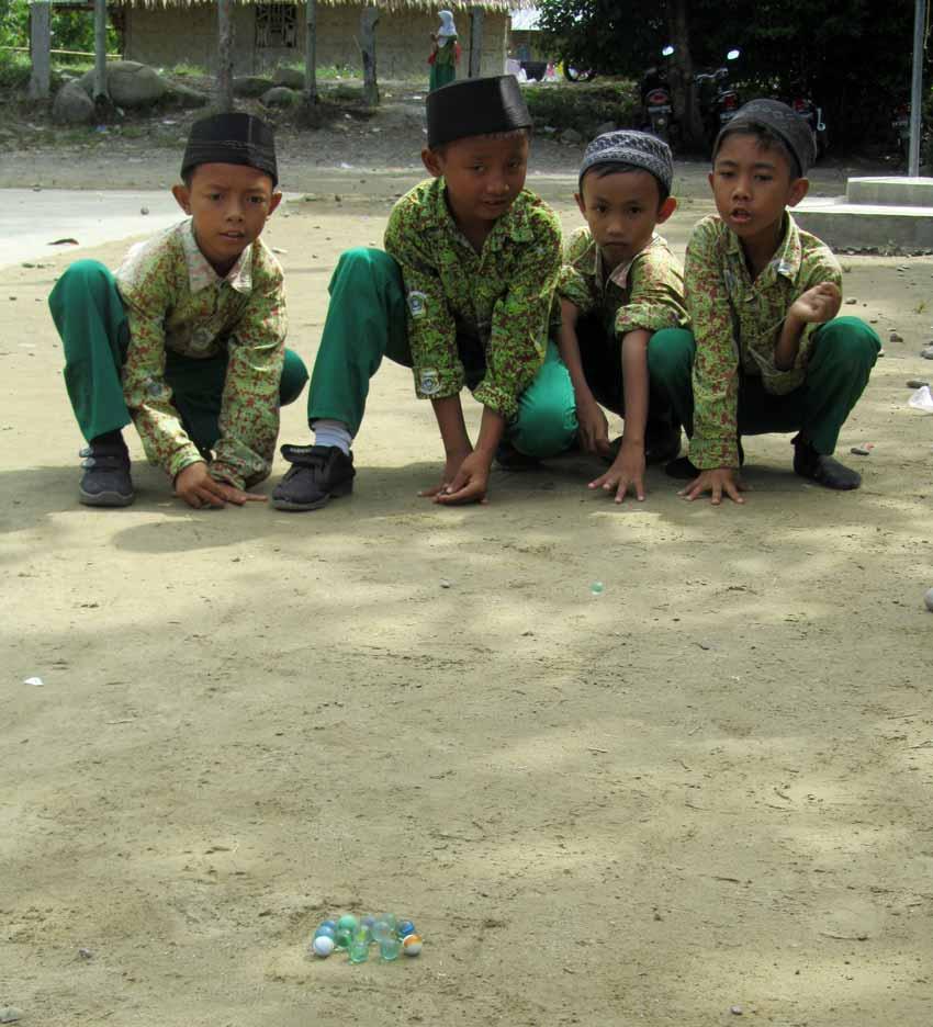 Summer Program - Animal Rights and Rescue | ARCC Programs | Bali/Sumatra: Operation Orangutan